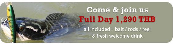 krabi fishing price
