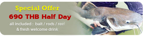 Krabi Fishing half day price
